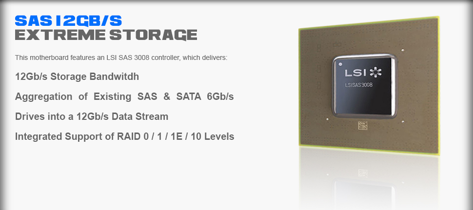 SAS 12Gb/s Storage